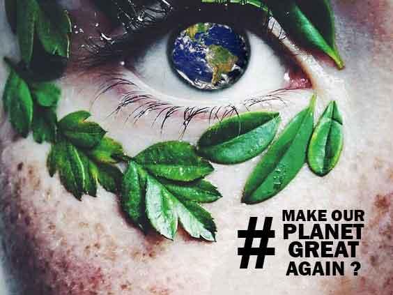 PPE : la France va-t-elle confirmer son soutien aux énergies renouvelables ?Lettre ouverte au Président de la République